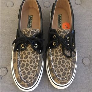 Sperry leopard topsider